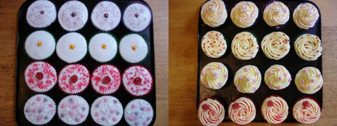 Cupcakes on tray combine_images.jpg