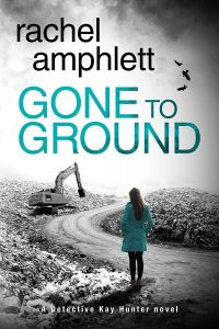 Gone to Ground Cover MEDIUM WEB_preview